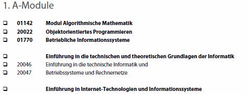 checkliste_wirtschaftsinformatik.png